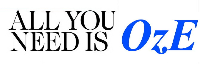 Logoschrift für OzE Bolligen