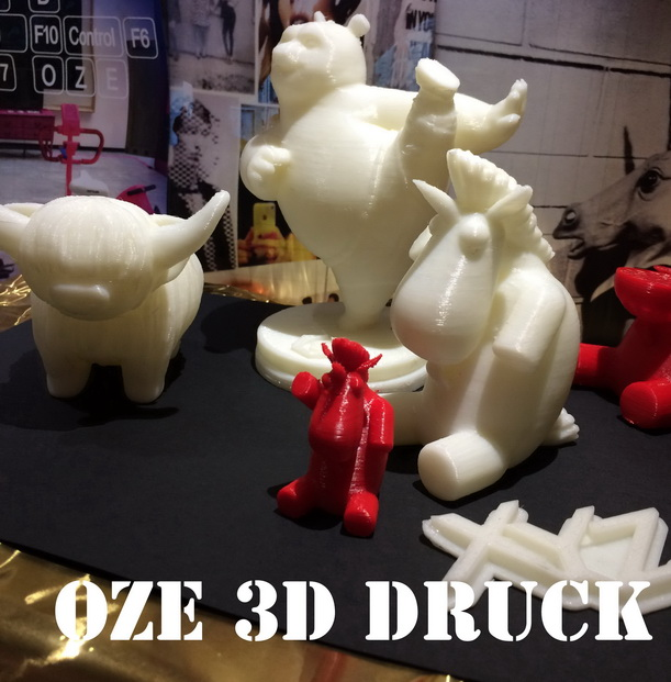 OzE Bolligen kann 3D Drucken